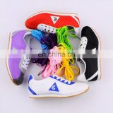 2011 fashion colorful shoelaces