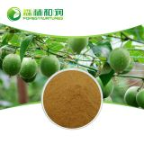 Organic Best Price Sweetener 10% 50% Mogroside V Organic Powder Mogroside80% Monk Fruit Extract
