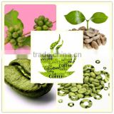 Factory direct supply with competitive price 100% Natural 50% Chlorogenic acid Pure Green Coffee Bean Extract (HPLC)