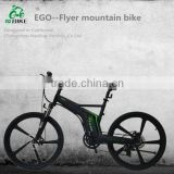 EGO Flyer,cargo mountain electric bike