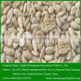 Chinese 2014 new crop Hulled Sunflower seeds Kernels for sale