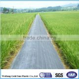 Best Quality Weed Mat Ground Cover , HDPE / PE / PP Weed Control Mat , Plastic Ground Cover for Gardening