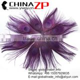 ZPDECOR Factory Bulk Sale Best Selling Dyed Eggplant Trimmed Short Peacock Feathers for DIY