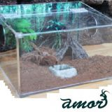 Reptile Acrylic Feeding Enclosure