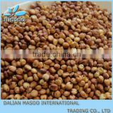 sweet sorghum seed From China