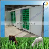 Hydroponics soilless culture barley fodder growing system for poultry,Cattle Sheep Horse Animal Livestock