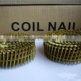 2-1/4''X.099 Screw Shank Vinyl-coated Pallet Coil Nails/Galvanized umbrella head roofing nails(factory and export)