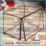 Stylish home decorating indoor plant large terrarium glass geometric