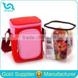 High Quality 300D Polyester Ice Cream Cooler Bag Insulated Ice Cream Cooler Bag With Detachable Clear PVC Compartment