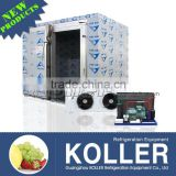 15tons New Design Freezer Cold Storage Room with refrigerators for frozen beef VCR50