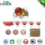 Natural Organic Best Quality Camu camu Berry Extract Vitamin C