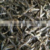 GOOD PRICE DRIED ANCHOVY FISH HEADLESS, HEAD (Email: katherine.vilaconic@gmail.com, Viber, Whatsapp: +841687264621)
