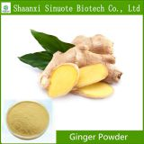 Factory Supply Organic Instant Ginger Powder