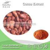 100% Pure 10% 20% Theobromine Cocoa Seed Extract Powder--NutraMax Supplier