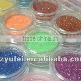 12 Color Glitter Sparkle Powder Nail Art Makeup Body Painting