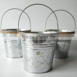 Galvanized Garden Metal Mini Buckets for decoration