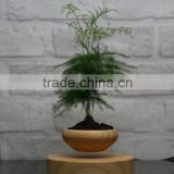 new arrival levitating plant pots
