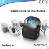Cryolipolysis Machine/3 Treatment Heads For Lose Weight Different Size /2 Years Guarantee Loss Weight