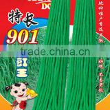 High Yield Early Mature Deep Green Chinese Long Bean Seeds Cowpea Seeds Asparagus Bean Seeds For Planting