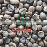 Vietnam raw Robusta coffee bean