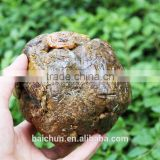 No metals and lead of antineoplastic pure raw Propolis from Baichun for manufacturer price