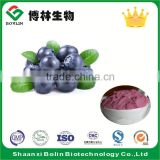 100% Natural Dried Blueberry Fruit Juice Powder with Low Price