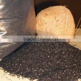 coconut shell bulk activated carbon for water purifier in Tianjin City for sale