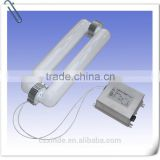 200w Low frequency induction lamps for flood light                                                                         Quality Choice