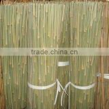 Plant Support Bamboo Sticks