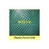 Grass Gravel Paver Grid