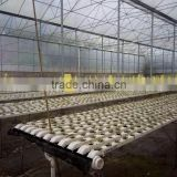 PVC Hydroponic Channels 75mmx50mm for salad vegetable growing