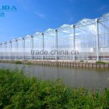 ISO9001 quality insurance polycarbonate PC sheet greenhouse for agriculture and commercial use