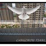 High Quality Bird Control Bird Spikes,Stainless Steel Pigeon Bird Spikes,Anti Bird Spikes---TLD5001A