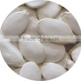 chinese raw snow white pumpkin seeds