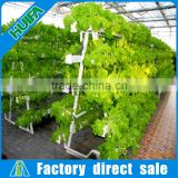 Commercial 10 Pipe vegetable low cost high output controller hydroponics greenhouse