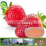 100% natural strawberry flavour powder