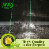 Black PP weed block fabric