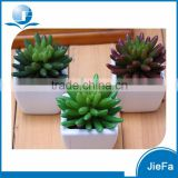 mini artificial succulents with pot for home decorations / garden decorations
