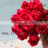 Long Stem Glass Flowers High Quality Long Stem Fresh Flowers The Pink Roses On Sale From Yunnan, China