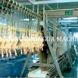 chicken slaughter machine Line