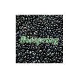 Black bean hull P.E.(Black bean hull extract, Black soybean hull extract, Black bean peel extract)