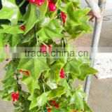 Beautiful factory direct ivy hanging vine plants synthetic rattan for wall decoration