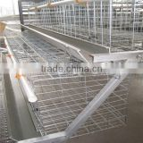 Automatic Poultry cages for chicken farm