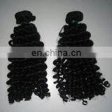 100% Unprocessed Human Virgin Indian Hair Curly