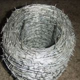 Galvanized Double Twisted Barbed Wire