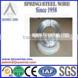AISI ASTM BS DIN GB JIS High Tension Hot Dipped Galvanized Steel Wire/Galvanized Wire/Galvanized Steel Wire Strand