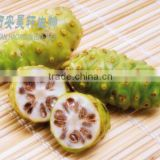 4:1 ~ 20:1 Organic noni fruit/morinda citrfolia extract powder