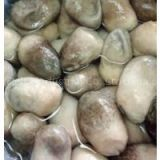 CANNED STRAW MUSHROOM/IN BRINE-Gold Food & Precious Medicine for Health