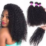 Natural Black Bouncy Curl Malaysian 18 Inches Front Lace Human Hair Wigs Chocolate