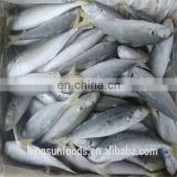 Frozen Breaded horse mackerel fillet